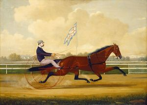 Charles S. Humphreys, Budd Doble Driving Goldsmith Maid at Belmont Driving Park, American